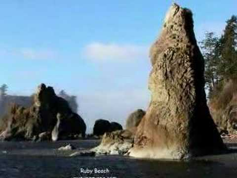 Wild Beaches of Olympic Peninsula