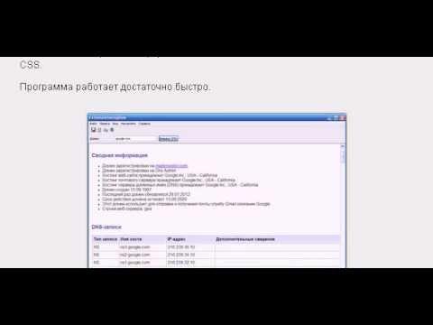 DomainHostingView. Полный анализ домена.