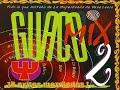 Guaco Mix (Los Mejores Exitos)