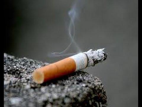 Les dangers du tabac sur le corps humain youtube for Interieur du corps humain photo