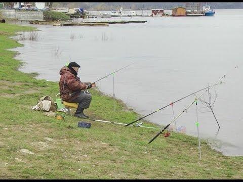 запрет на ловлю рыбы в татарстане