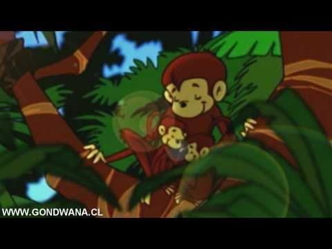 Gondwana - Felicidad