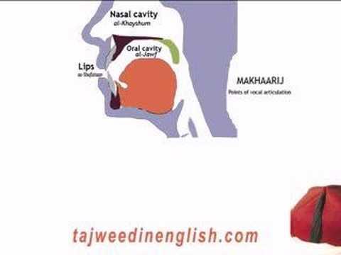 Learn tajweed et apprendre le tajwid