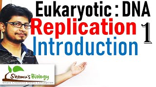 DNA replication in eukaryotes 1 | Introduction