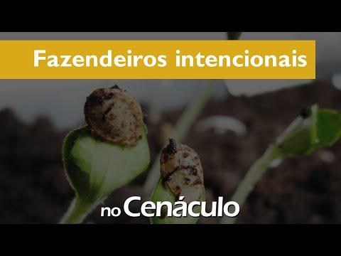 Fazendeiros intencionais | no Cenáculo 23/07/2021