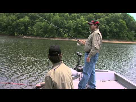 Bluegill fishing on Lake Cumberland