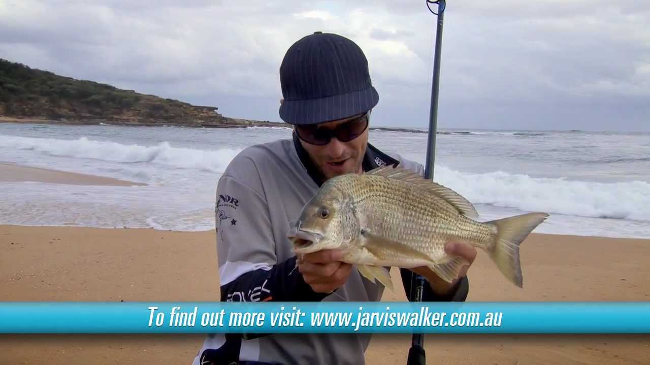 Beach fishing with bait and landing a 42cm bream youtube for Bream fishing bait