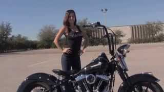 Used 2008 Harley Davidson Cross Bones Motorcycle for sale