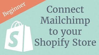 Connect Mailchimp to your Shopify Store