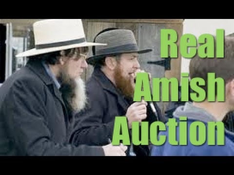 Behind The Scenes of A Real Amish Livestock Auction