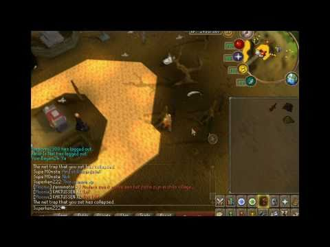 RuneScape-  Red Salamanders Hunting Guide l Around 60k Hunter Xp/Hr l By Superken222