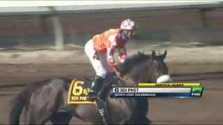 One-Time Underdog Claimer Sets Track Record in Los Alamitos Mile
