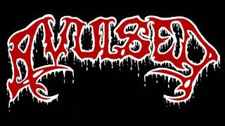 Watch Avulsed Morgue Defilement video