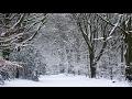 [4K] Sneeuw Heiloo 12 februari 2017