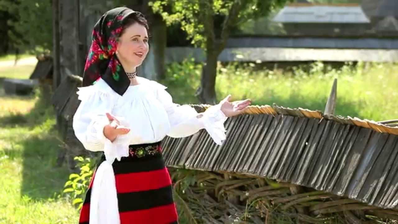 Maria Homei Costea - Hai omule si petrece