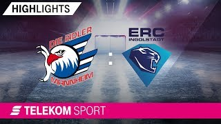 Adler Mannheim – ERC Ingolstadt | 12. Spieltag, 18/19 | Telekom Sport