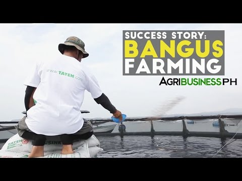 Success Story: How to earn Millions in Bangus Farming | Agribusiness