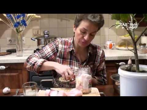 Как приготовить сало с чесноком - видео