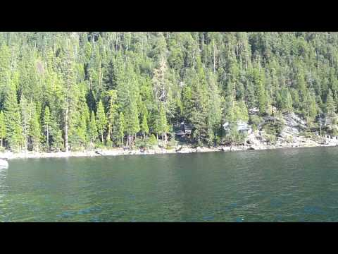 Pinecrest Lake Osprey pick up dead fish 1080p