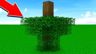 WHAT IF MINECRAFT DIDN'T HAVE RULES?