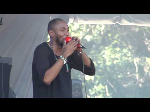 Yasiin Bey (Mos Def) - Ms. Fat Booty/Sun is Shining @ Osheaga (Day 2) in Montreal