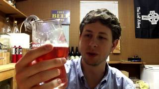 Homebrew Review #2 - Secaur Raspberry Berliner Weisse