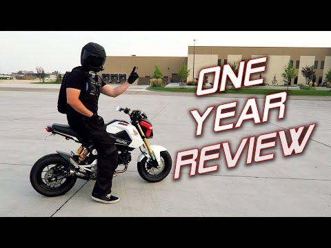 One Year With a Honda Grom   Owner's Review