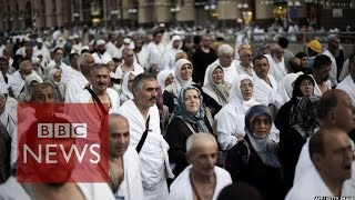 Hajj in numbers - in 60 seconds - BBC News