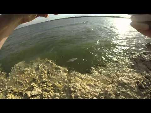 Benbrook lake for Benbrook lake fishing