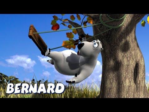 Bernard Bear | Falling off the swing AND MORE | Cartoons for Children