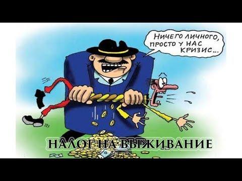 Назарбаев:  Самозанятость - это прямой уход от налогов...