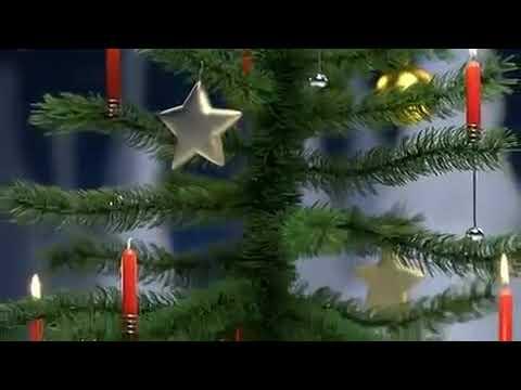 Elefant pupst den Weihnachtsbaum