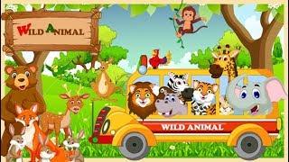 wild animals for kids | Learning Wild Animals for Kids Learning Wild Animals Names