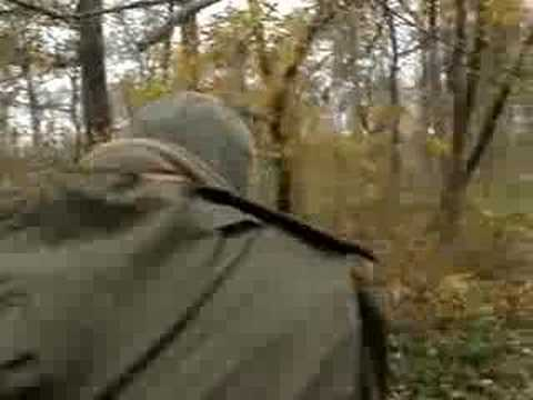 hunting wild boar Video