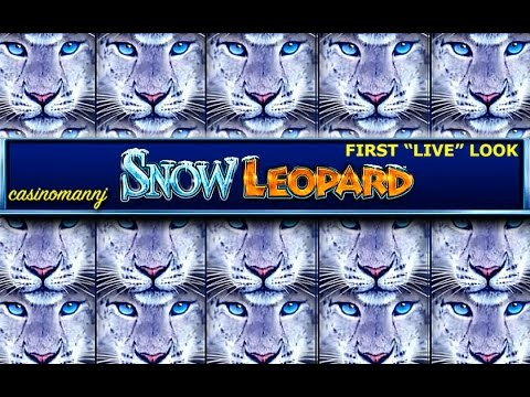 NEW SLOT! - Snow Leopard Slot Bonus - First