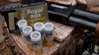 Low Recoil 12 gauge 00 BuckShot Test
