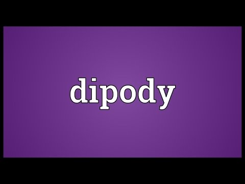Header of dipody
