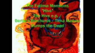 Watch Fatima Mansions Hive video