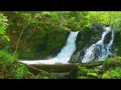 Tranquility, relax music, nature, forest, waterfall, mountains, instrumental