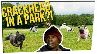 Off The Record: Joe's Dog Park Story & a Beaws Argument ft. DavidSoComedy