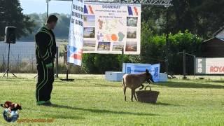 2015 - Championnat Ring des Dom-Tom à Domérat - Hida de la Vallée des Nutons - Jean-Marie Patrice