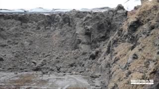 Zuccherificio Eridania: dalle barbabietole al biogas