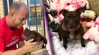 Kansas Man Moves Into Animal Shelter to Help Get Dog Adopted