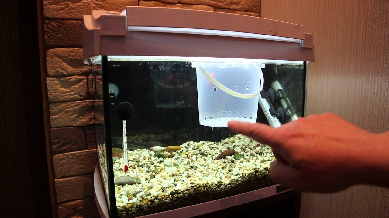 Отсадник в аквариум своими руками 878