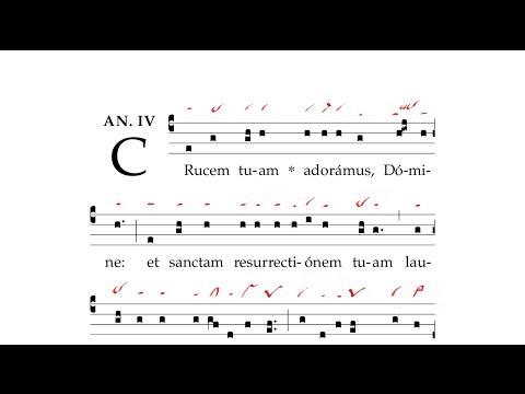 Gregorian Chant - Crucem tuam