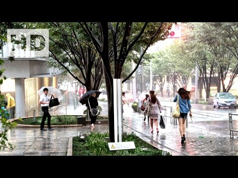 268. Half a million advised to evacuate as heavy rain lashes Japan