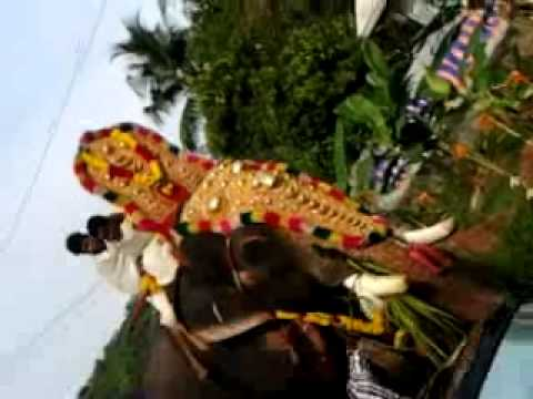 Christos Niarchos photographer videos (Kerala Temple Fest)