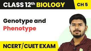 Genotype and Phenotype | Principles of Inheritance and Variation | Class 12 Biology