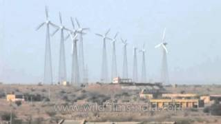 Wind power from the Indian desert, Jaisalmer