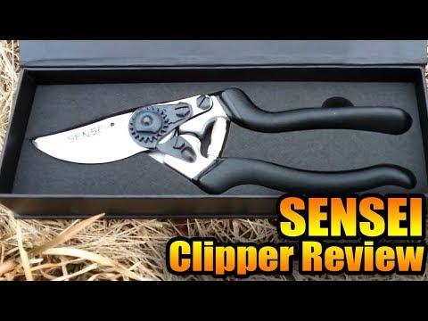 Sensei Clipper Review